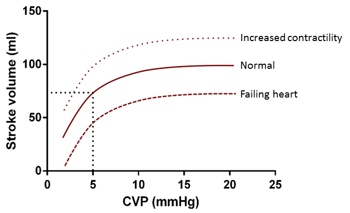 frank staling law The frank-starling law is the description of cardiac hemodynamics as it relates to myocyte stretch and contractility the frank-starling law states that the stroke volume of the left ventricle will increase as the left ventricular volume increases due to the myocyte stretch causing a more.